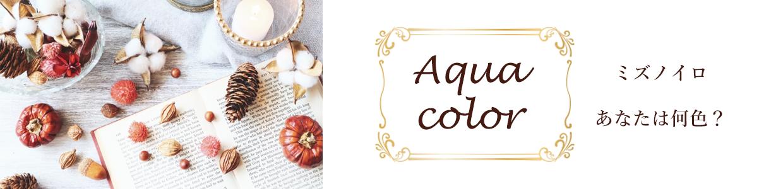 Aqua color ミズノイロ